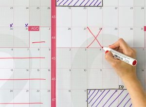Detalle de calendario anual gigante de pared reescribible