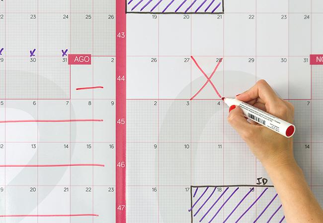 Detalle de calendario anual gigante de pared reescribible