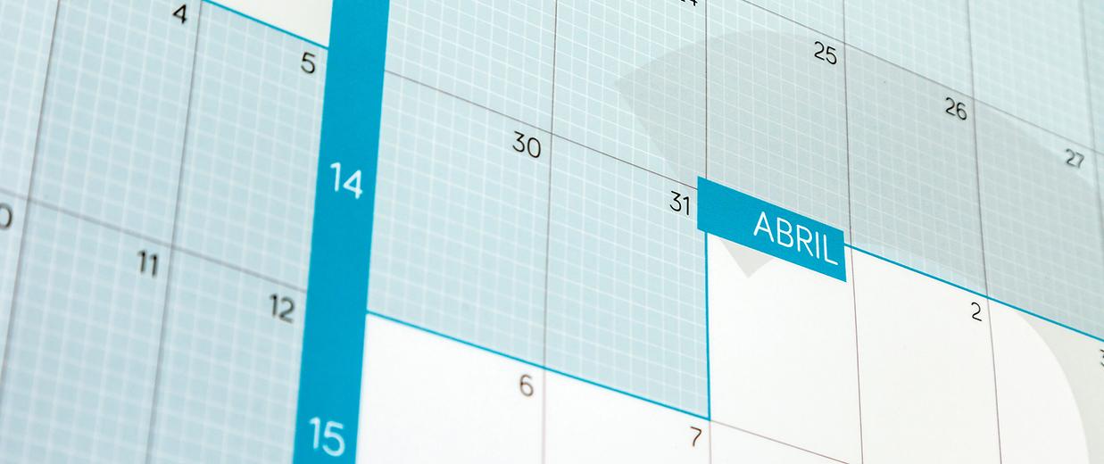 Detalle-calendario-año-vista